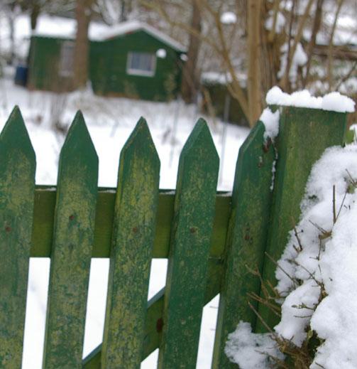 Grünes Tor  und Schuppen