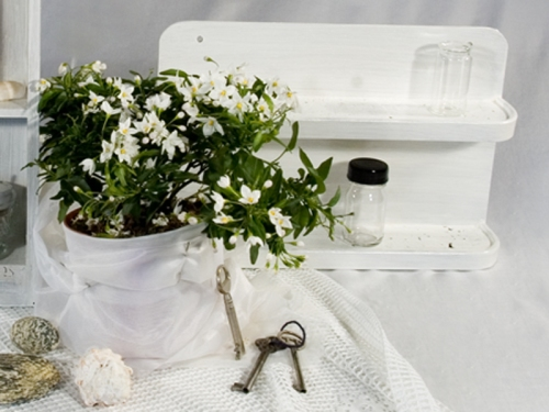 wei e pflanze recyclingkunst und der versuch langsam und nachhaltig zu leben. Black Bedroom Furniture Sets. Home Design Ideas