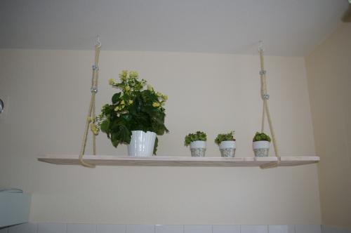 hängendes Küchenregal, Hängeregal, Treibholzregal