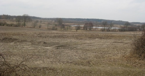 Dithmarschen flaches kahles Land im Winter