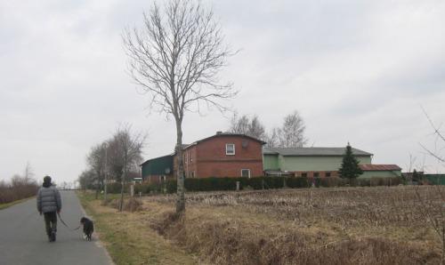 Dithmarschen Bauernhof in Tensbüttel-röst