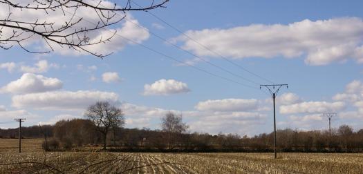 Stromleitung in Dithmarschen