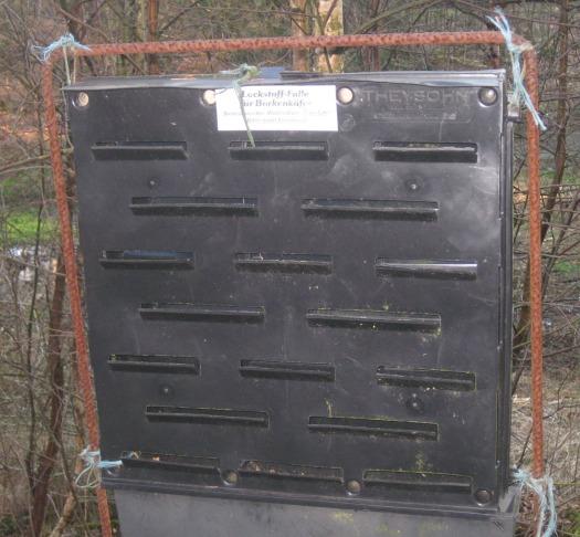 Lockstofffalle für Borkenkäfer Riesewohld Wald
