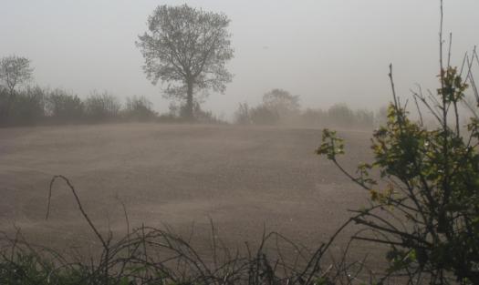 Sand Verwehungen in Dithmarschen
