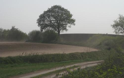 Sandsturm in Dithmarschen