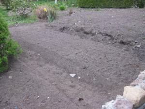 Gemuesebeet anpflanzen Beete Gartengestaltung Gartenarbeit
