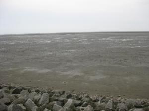 Watt, Wattenmeer, Meldorfer Hafen,