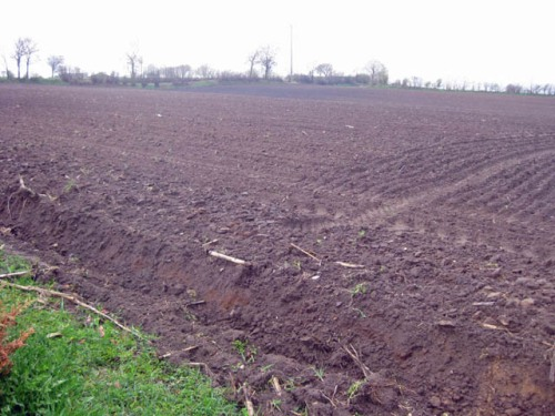Weitsicht, Aussaat von Mais, Landwirtschaft, Ackerfläche