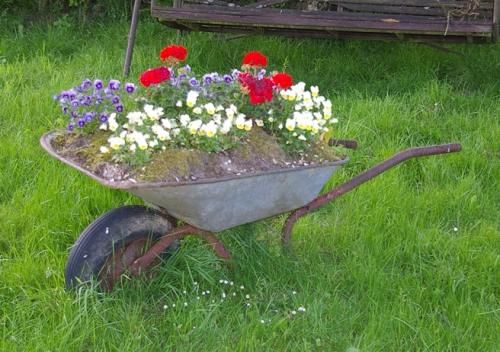 Schubkarre Gartendekoration Geranien Stiefmuetterchen Garten