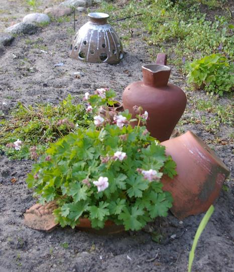 Stillleben Tonvase Tontopf Tonscherben Gartendekoration Pflanzen