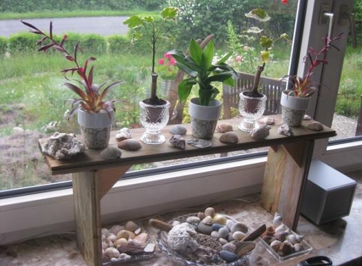 Sommerzeit Muschelzeit Fensterdekoration mit Muscheln