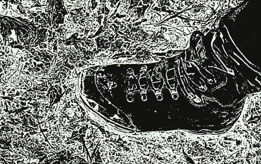 Fuss im Matsch Spaziergang in Dithmarschen