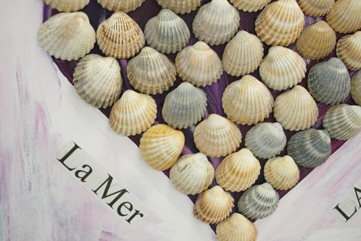 Muscheln vom Strand Herz