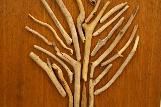 Baum aus Treibhölzern als Wanddekoration