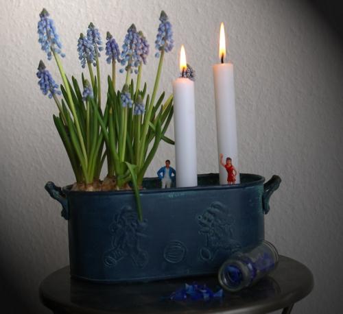 Perlhyazinten mit Kerzen Dekoration SChlueter Dithmarschen