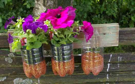 Gartenblumen-in-Plastikflaschen b