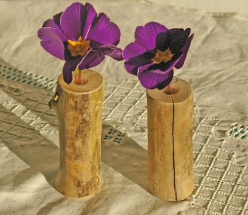 2 vasen holz glas