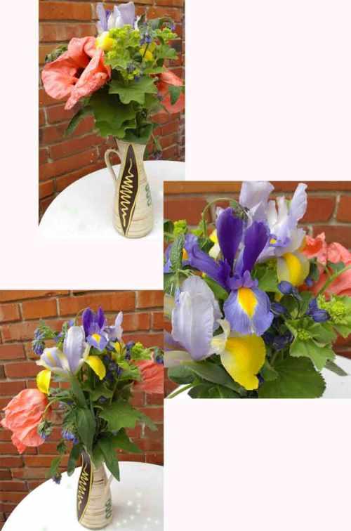 fantastische Gartenblumen