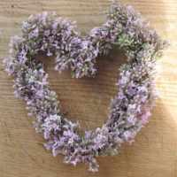 Wir basteln ein Lavendelherz - 2.ter Versuch