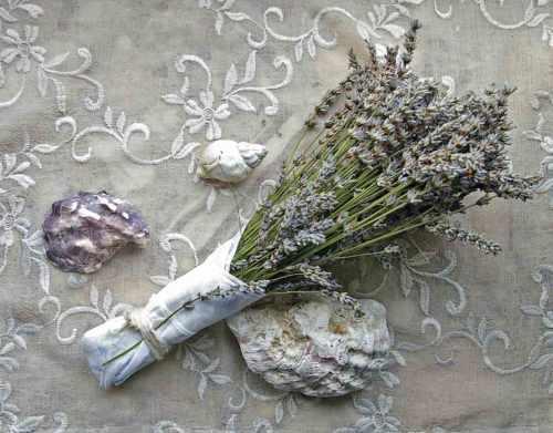 Lavendel strauss mit Spitzentaschentuch