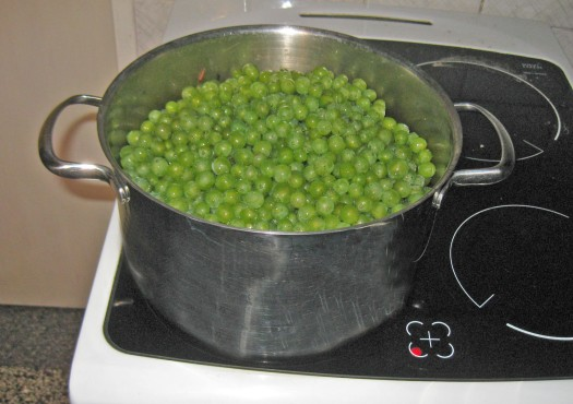 Weintrauben kochen
