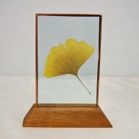 Ein schöner Glücksbringer - Ginkgoblatt zwischen Glasscheiben