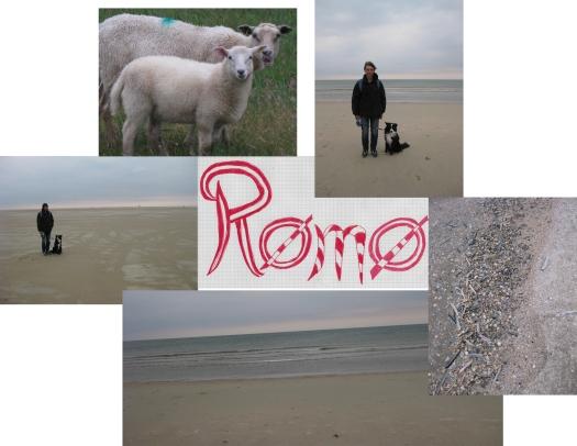 Römo in Dänemark ist eine reise wert