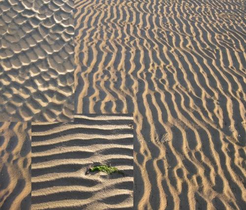 Meeresboden im Watt
