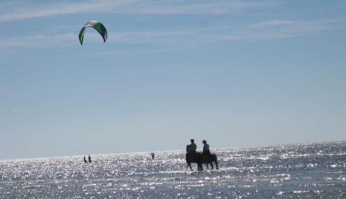 Kitesurfer und Reiter in Sankt Peter Ording Böhl