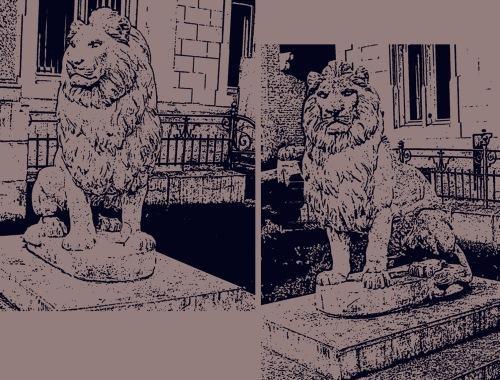 skizze löwen
