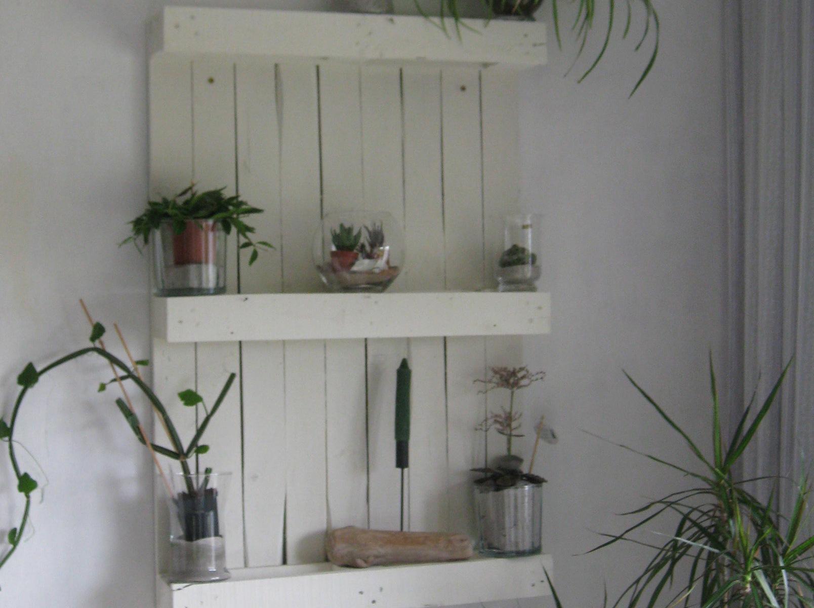 Palettenregal für Pflanzen