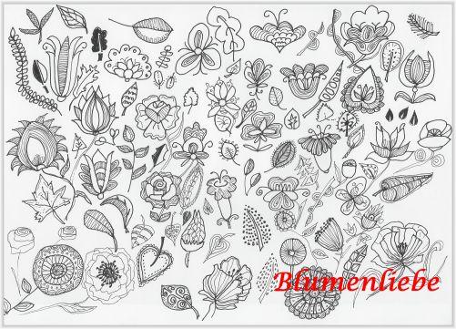 Blumen zeichnungen