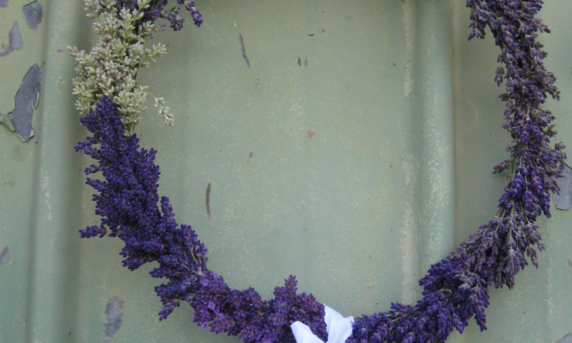 Lavendelkranz mit verschiedenen Sorten