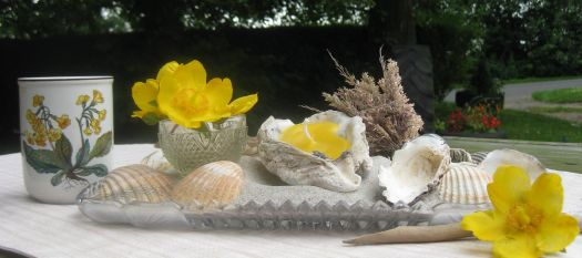 Sommerdeko mit Muscheln