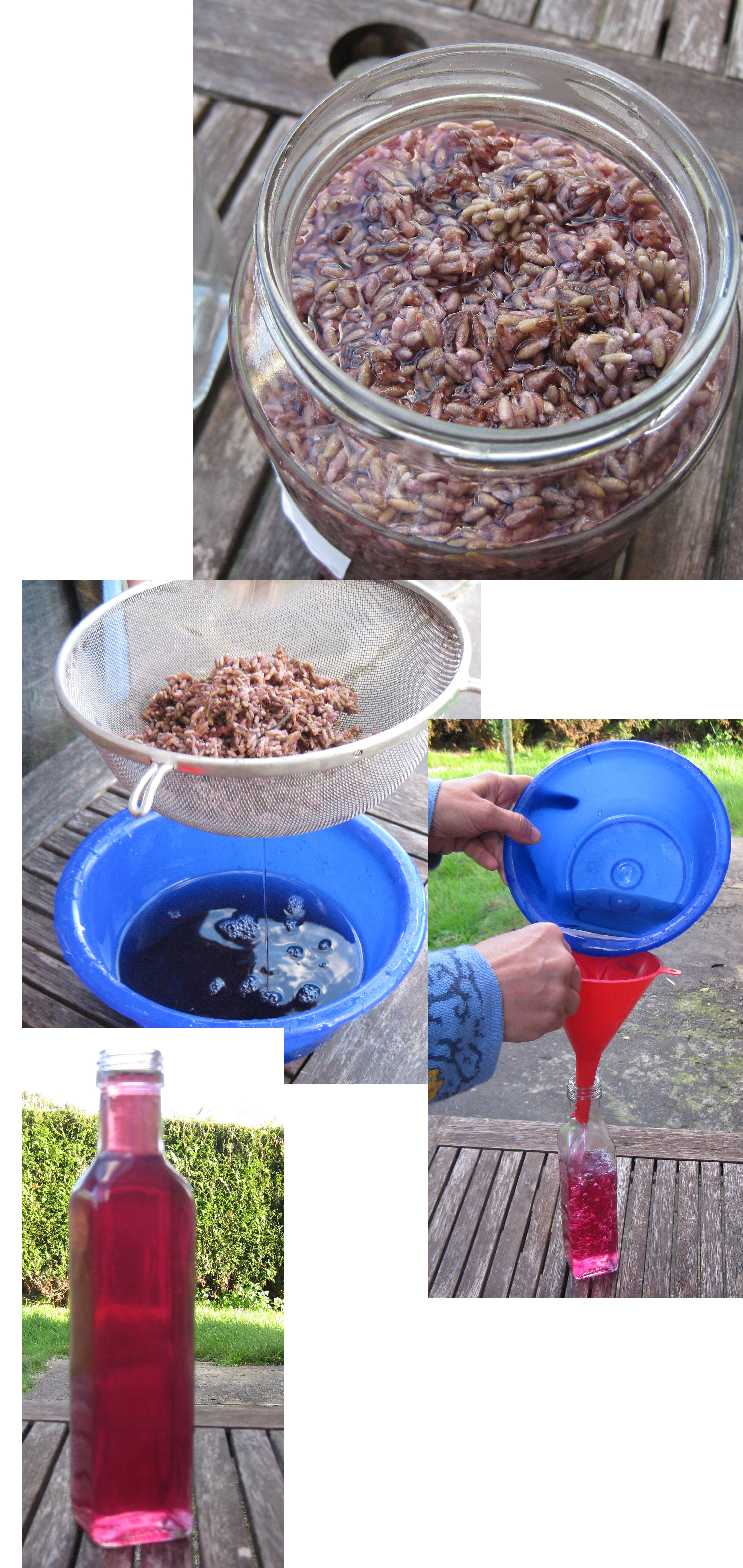 selbermachen Lavendel-Essig-Reiniger