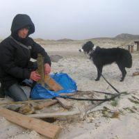 Treibholz sammeln an der Nordsee