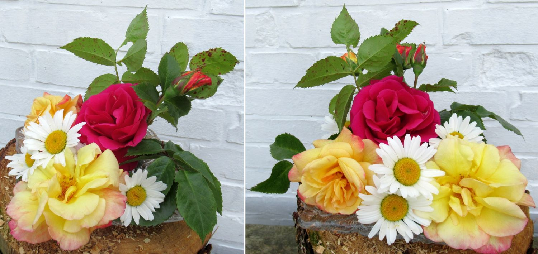 Rosenblüten auf einem Glasteller dekoriert mit Margeriten. Praktische Tischdekoration