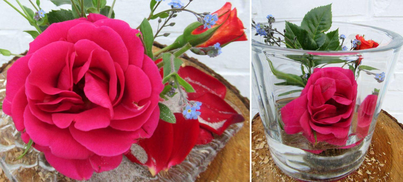 Rosenblüten und wenige Vergissmeinnicht sehen fantastisch aus, eine schöne Dekoidee auf einem Glasteller oder in einem Glasblumentopf