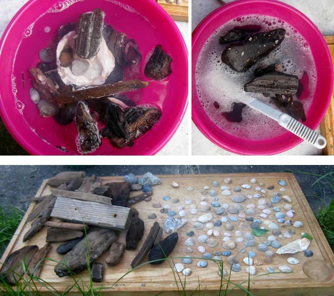 Treibholz, Muscheln und Strandgut waschen