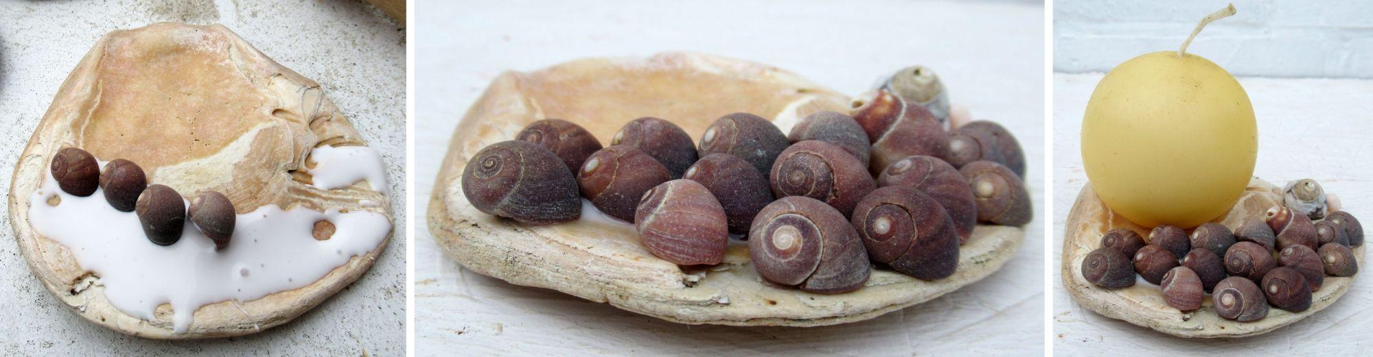 Muscheln als Kerzenständer eine Bastelidee