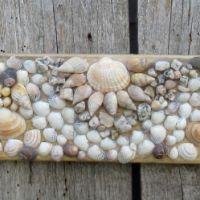 Ein Muschelbild auf Holz für die Sommerdekoration