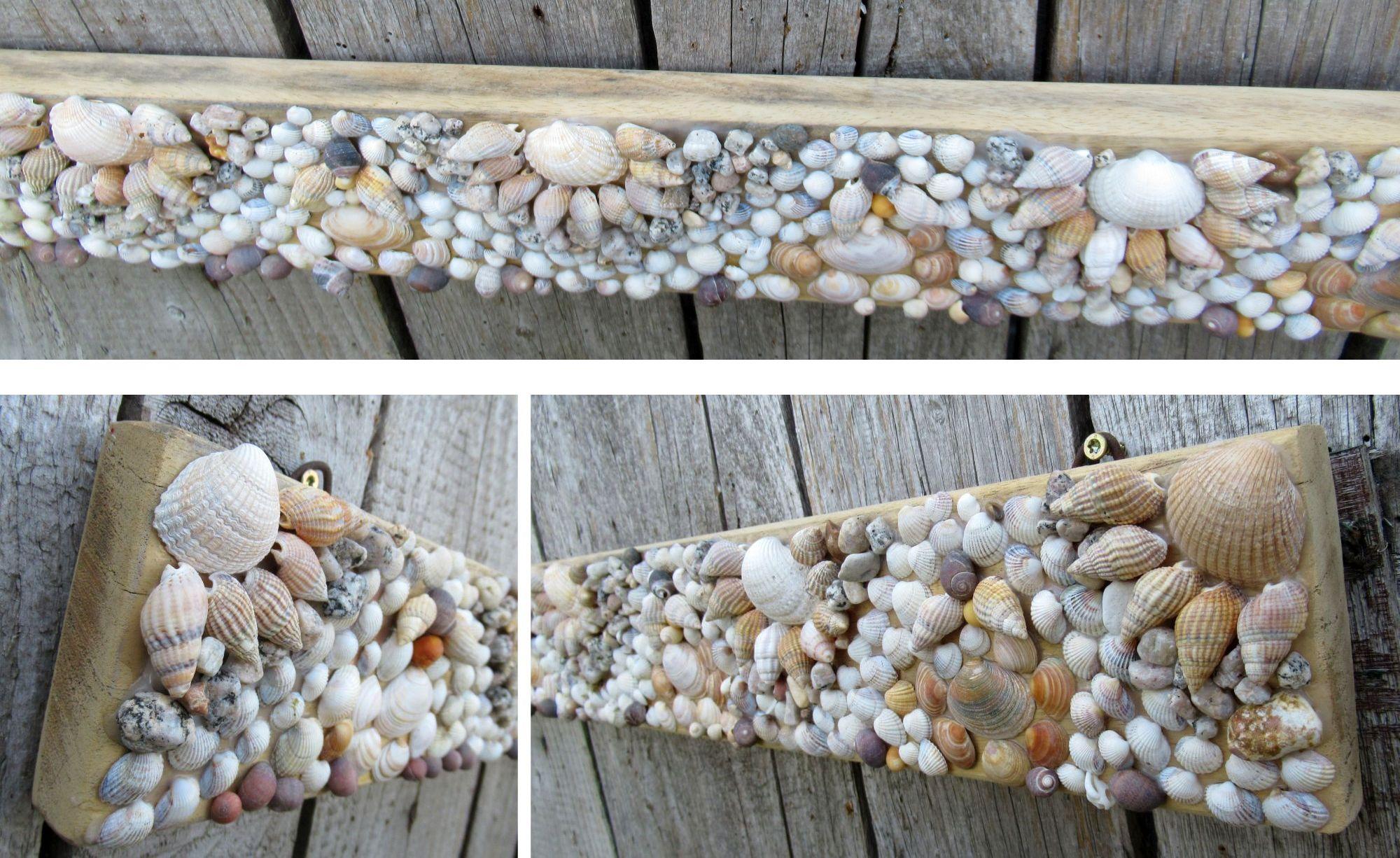 Ein Muschelbild auf einem Holzbrett, Inspiration