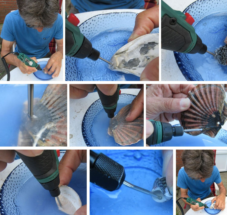 Muscheln mit einem Dremel in einer Schale mit Wasser bohren