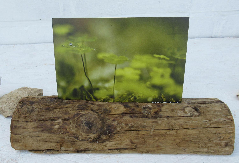 Treibholz umgearbeitet zum Postkartenständer