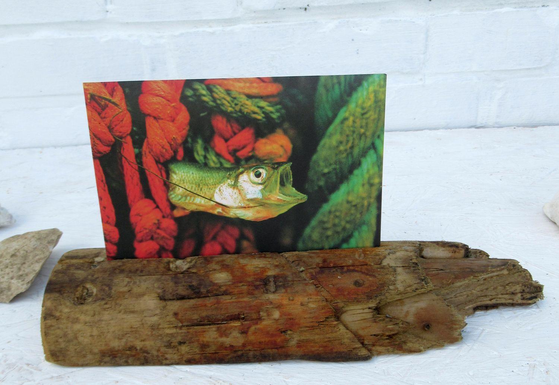 Ein Postkartenständer aus Treibholz, Idee zum Selbermachen