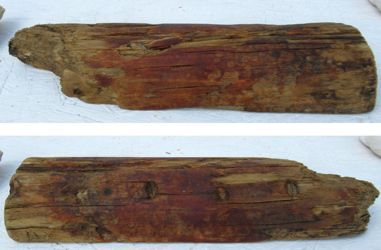 Ideales Treibholz für einen Postkartenständer zum Selberbauen