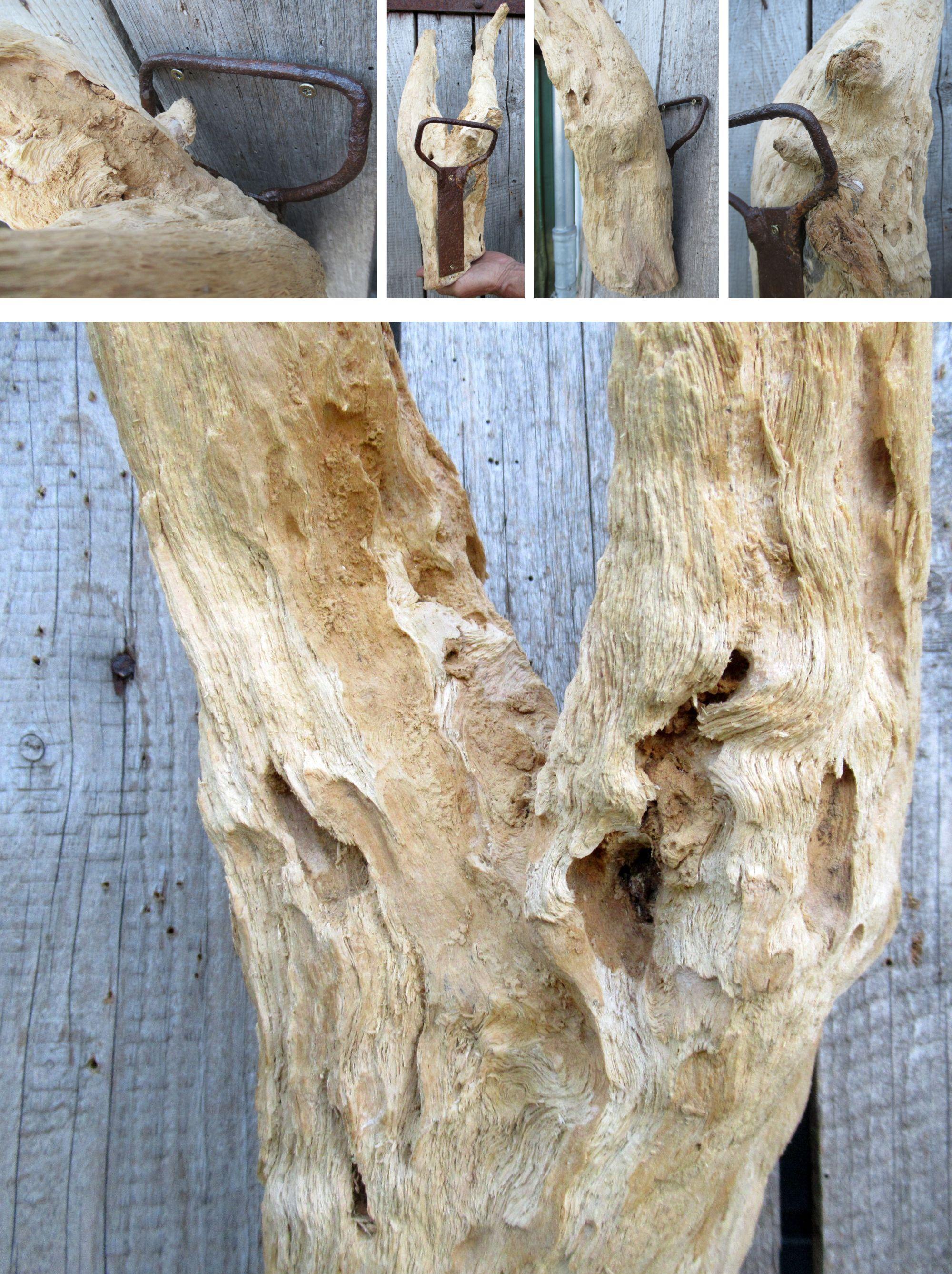 Treibholz Objekt zum Aufhängen, diy Idee