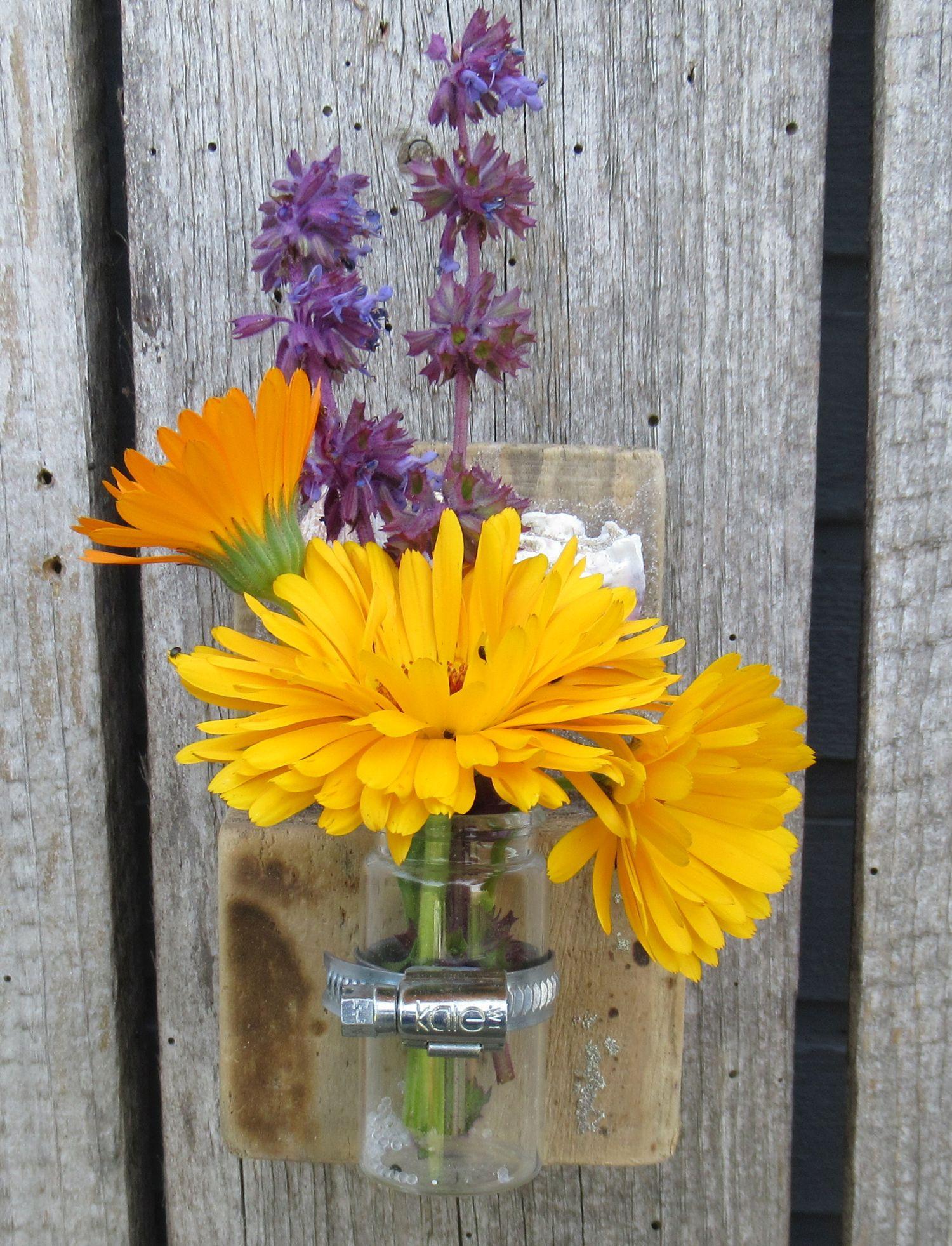 Vase zum Aufhängen aus Holz und Muscheln, diy
