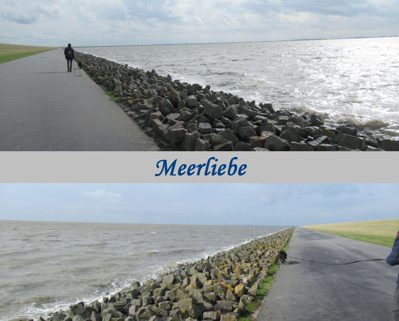 Meerliebe Nordsee in Dithmarschen