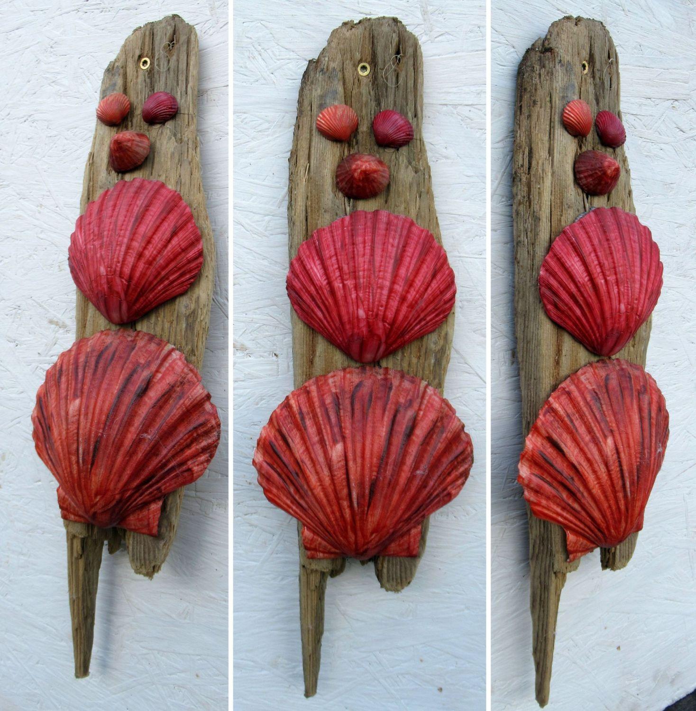 Treibholz mit roten Muscheln als Dekoration für die Wand